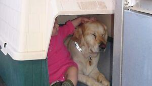 dog kennel - dark green and cream Blackmans Bay Kingborough Area Preview