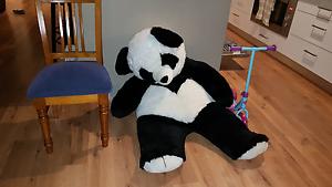 Giant Panda Teddy for Nursery Pakenham Cardinia Area Preview