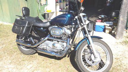 Reluctant sale Harley Sportster Beautiful bike! No Rego. Biggenden North Burnett Area Preview