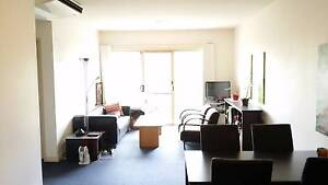 Room Available in Adelaide CBD Apartment Adelaide CBD Adelaide City Preview