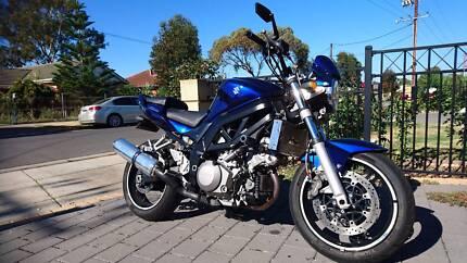 2006 Suzuki SV 1000 low kms price dropped