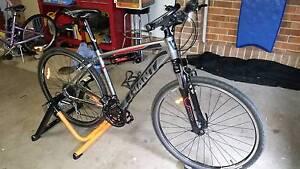 Giant Roam 3 Mountain Bike Raworth Maitland Area Preview