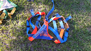 Fall arrest harnesses in test Caboolture Caboolture Area Preview