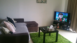 Furnished Single room near to train station Glendalough Stirling Area Preview