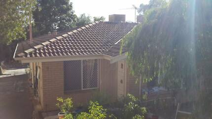 [REDUCED!] $275 for 3-by-1 house just mins from Curtin! (3 McKay)