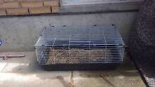 Lop eared rabbit + cages Mount Barker Mount Barker Area Preview