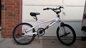 BMX bike with 4 pegs
