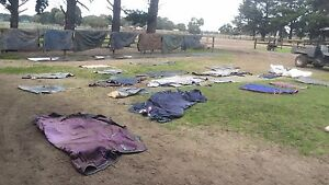 Horse Rug and Gear Sale.  Every Saturday 10am to 2pm Tooradin Casey Area Preview