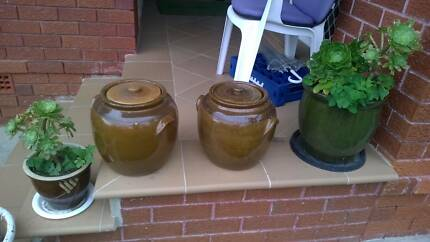 Garden pots pot plant big 2x brown with lids Height 30x28cm Miranda Sutherland Area Preview