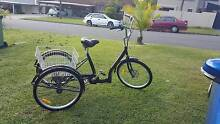 """2016 Model 24"""" Adult 6 Gears Disc Brakes 3 Wheel Tricycle Cruiser Benowa Gold Coast City Preview"""