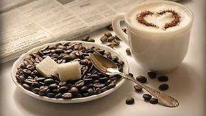 MUST SELL URGENTLY!!!COFFEE SHOP IN SHOPPING CENTER IN SYDNEY CBD Sydney City Inner Sydney Preview
