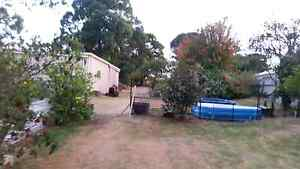 Free room for yard work Albany Albany Area Preview
