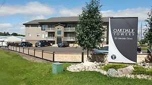 Modern 3 Bed Suite - Cat Friendly - Available August 1st!