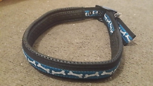 Dog collar Paralowie Salisbury Area Preview