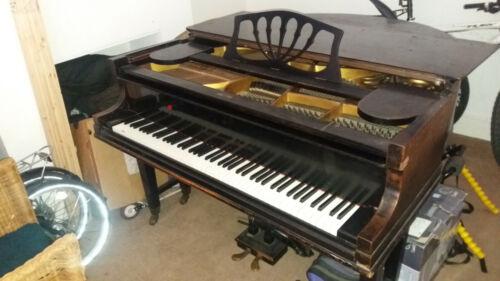 Knake Munster IVV Mini Grand Piano