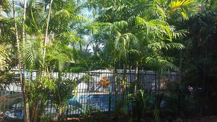 $190 per week incl. Electricity - Room for Rent - Alawa Darwin