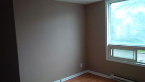 NEWLY RENOVATED 1 BDRM  UNIT $625 PLUS - AVAILABLE NOW