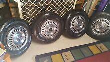 Holden Premier/Kingswood 14 wide set wheels hubcaps Bald Hills Brisbane North East Preview