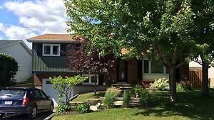 Maison - à vendre - Gatineau - 12683979