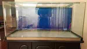 4ft x 2ft x 2ft Aquarium Fish Tank with Cabinet ++ Glen Waverley Monash Area Preview