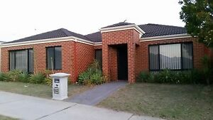 Spacious 3 x 2 Tapping - Available now Tapping Wanneroo Area Preview