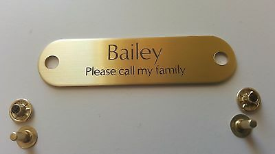 BRASS RIVET PET TAG ID FOR DOG COLLAR NAME ENGRAVED PLATE with RIVET -