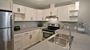 Almost New 3 Bedroom Apartment - Available November 1st!