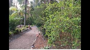 Gardening and yard maintenance Camira Ipswich City Preview