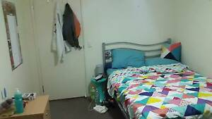Room for short-term rental in Sippy Downs, near University Sippy Downs Maroochydore Area Preview