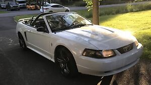 Mustang convertible 2003