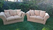 Sofas / Couch - Fabric 2 seater Coorparoo Brisbane South East Preview