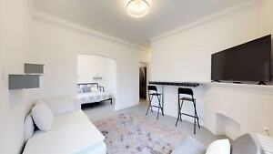 Furnished 1 Bedroom Plus Den Apartment Available Jan 3rd