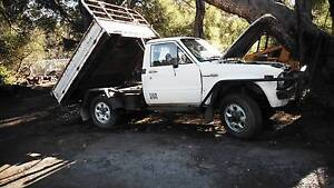 Hilux 1980 and tip body Parkerville Mundaring Area Preview