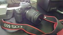 Canon EOS 60D 18.0 MP Digital SLR Camera (Kit with lens) Revesby Heights Bankstown Area Preview
