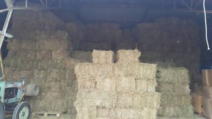 HAY BALES MEADOW GRASS RABBITS HORSE CHICKENS
