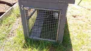 rabbit hutch and rabbits for only $50 Canterbury Canterbury Area Preview