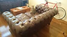 Leather Chesterfield 2.5 Seater Lounge Petersham Marrickville Area Preview
