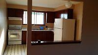 clean spacious 3 bdrm apt. needs mature tenant(s)
