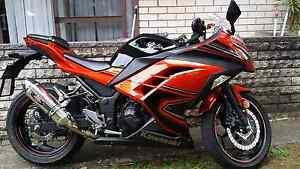 Ninja 300 ABS SE Concord Canada Bay Area Preview