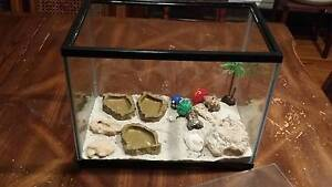 Crazy crab tank and accessories Wanneroo Wanneroo Area Preview