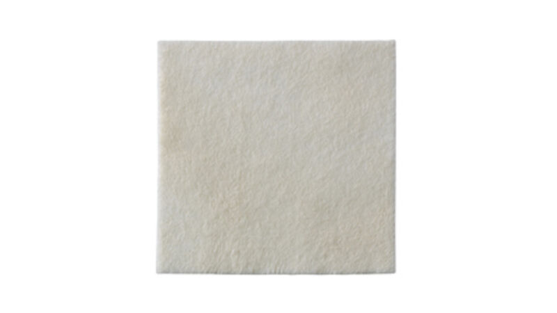 "Biatain Alginate Dressing by Coloplast: 4"" x 4"" - Box of 10"