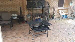 Dome Top Metal Bird Cage Cashmere Pine Rivers Area Preview