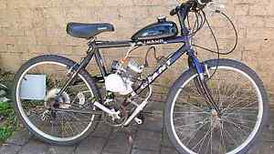 Bicycle with 80 cc 2-stroke motor Highland Park Gold Coast City Preview
