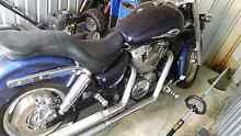 Honda shadow vt 1100 saber Gagebrook Brighton Area Preview