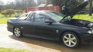 2001 Holden Commodore S 4 Sp Automatic Utility