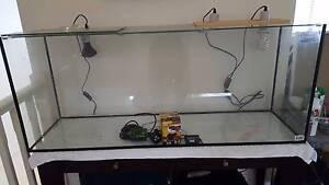 Beginners reptile/fish tank Lugarno Hurstville Area Preview
