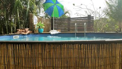 Sterns Aboveground round pool ~ cheap tropical fun!🌴