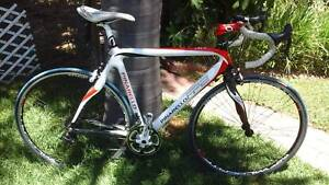 PINARELLO FP2 FULL CARBON ROAD BIKE