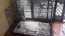Dog cage which can fold Canterbury area Clemton Park Canterbury Area Preview