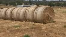 Hay - Round Bales Rutherglen Indigo Area Preview